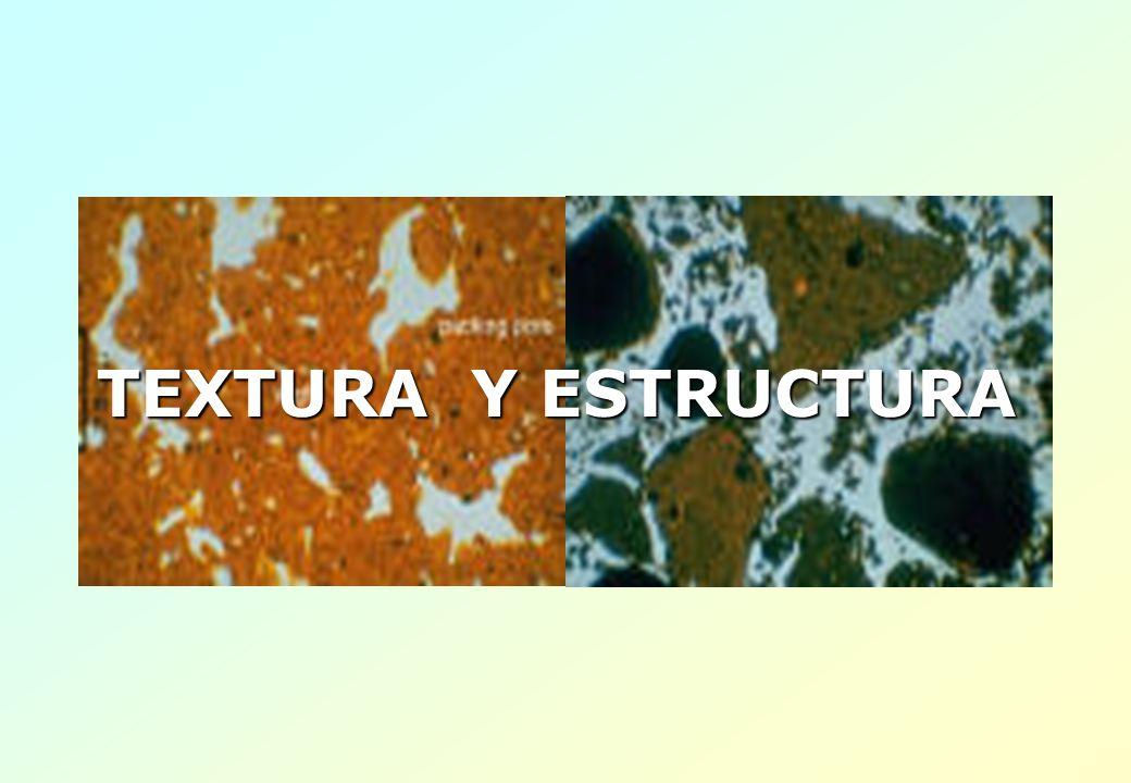 Textura: Superficie específica Reacciones de superficie: Adsorción Intercambio iónico