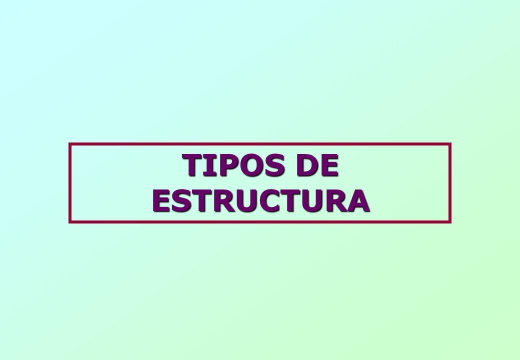 TIPOS DE ESTRUCTURA