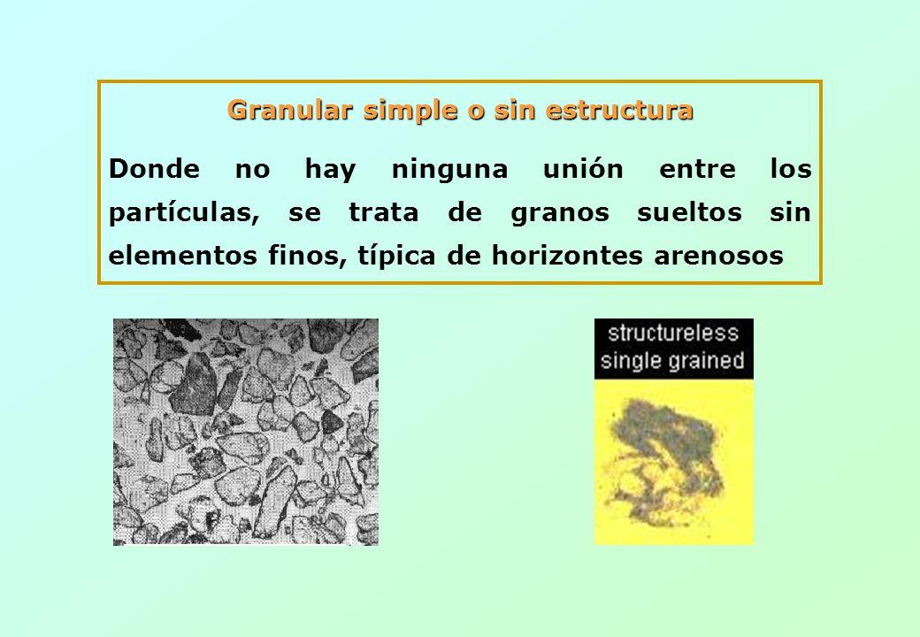 Granular simple o sin estructura Donde no hay ninguna unión entre los partículas, se trata de granos sueltos sin elementos finos, típica de horizontes