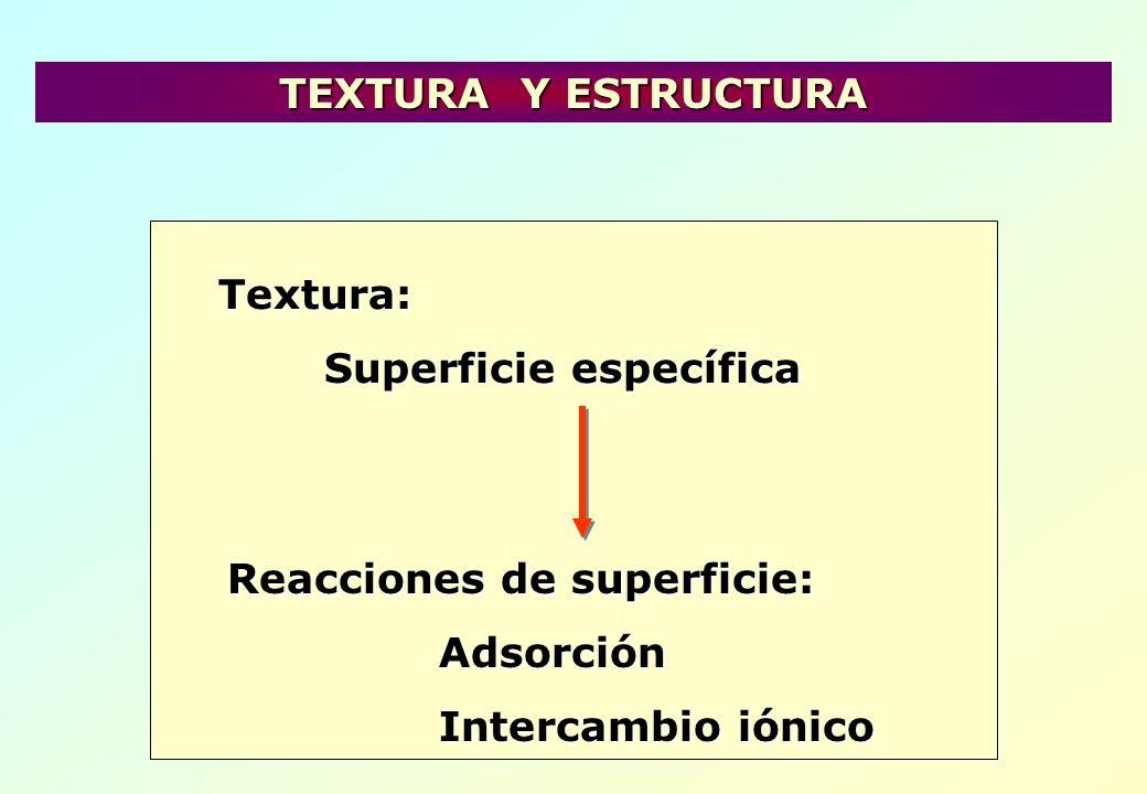 Estructura: Erosión del suelo Determina la diferencia entre un mineral y un suelo TEXTURA Y ESTRUCTURA