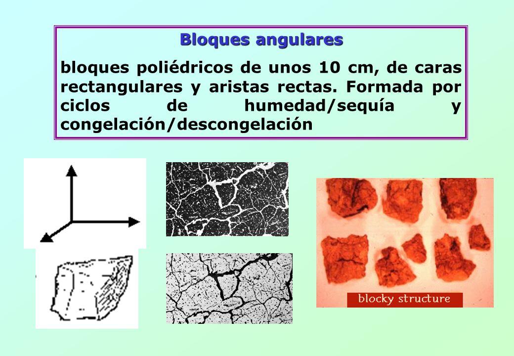 Bloques angulares bloques poliédricos de unos 10 cm, de caras rectangulares y aristas rectas. Formada por ciclos de humedad/sequía y congelación/desco