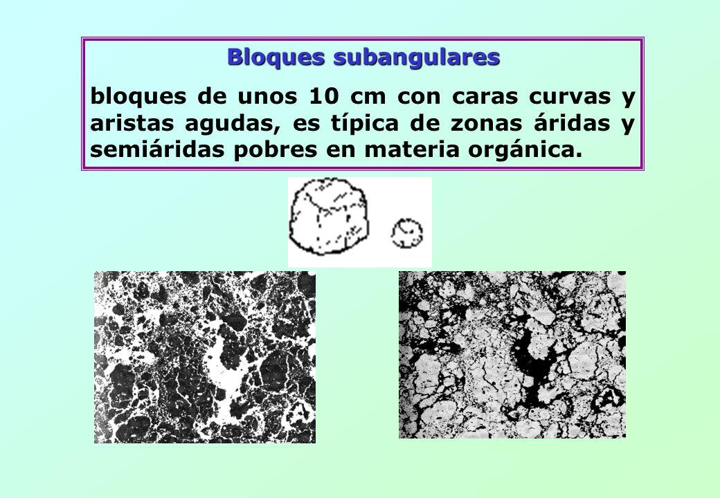 Bloques subangulares bloques de unos 10 cm con caras curvas y aristas agudas, es típica de zonas áridas y semiáridas pobres en materia orgánica.