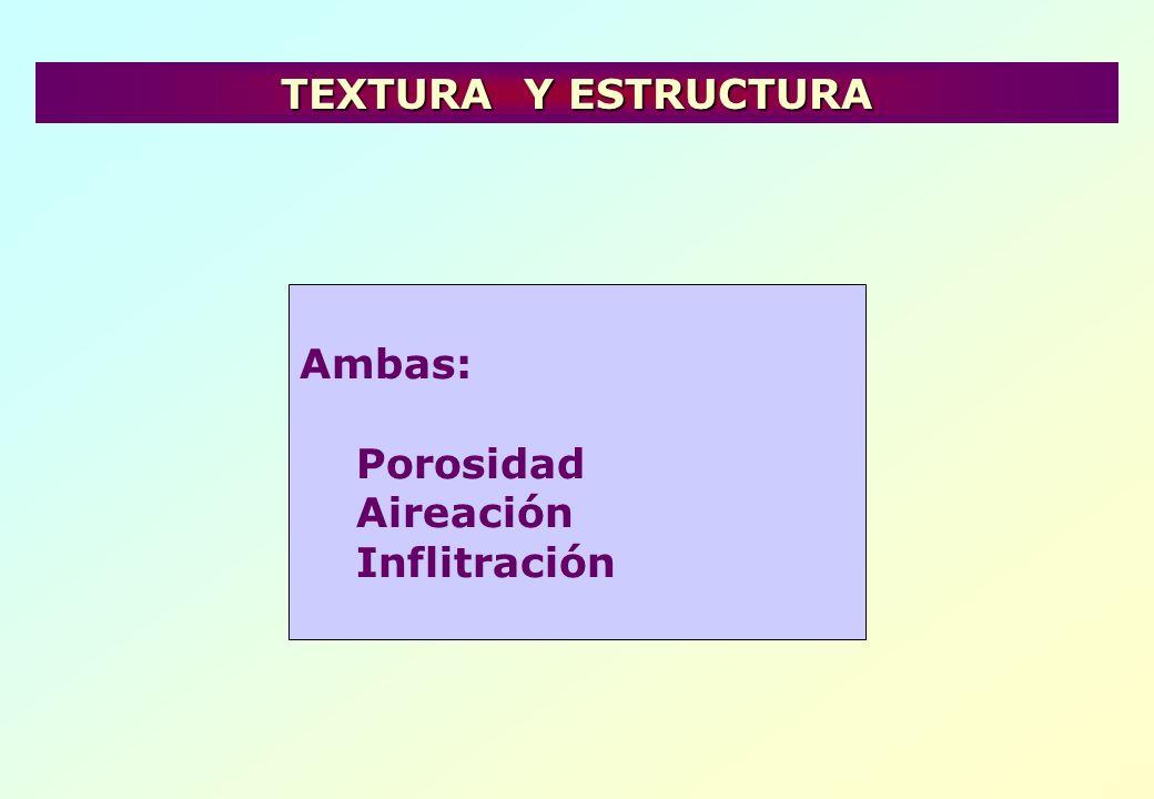 Ambas: Porosidad Aireación Inflitración TEXTURA Y ESTRUCTURA