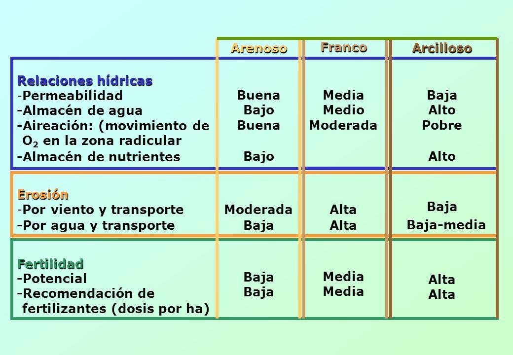 FORMAS DE MANTENER LA ESTRUCTURA DEL SUELO 1.Minimizar las labores de arado 2.