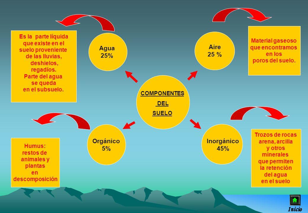 COMPONENTES DEL SUELO Agua 25% Orgánico 5% Inorgánico 45% Aire 25 % Es la parte líquida que existe en el suelo proveniente de las lluvias, deshielos,