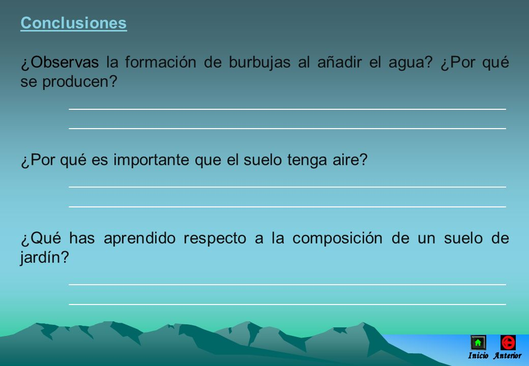 Conclusiones ¿Observas la formación de burbujas al añadir el agua? ¿Por qué se producen? ________________________________________________ ¿Por qué es