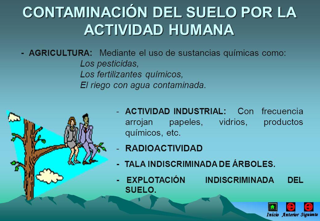 CONTAMINACIÓN DEL SUELO POR LA ACTIVIDAD HUMANA - AGRICULTURA : Mediante el uso de sustancias químicas como: Los pesticidas, Los fertilizantes químico