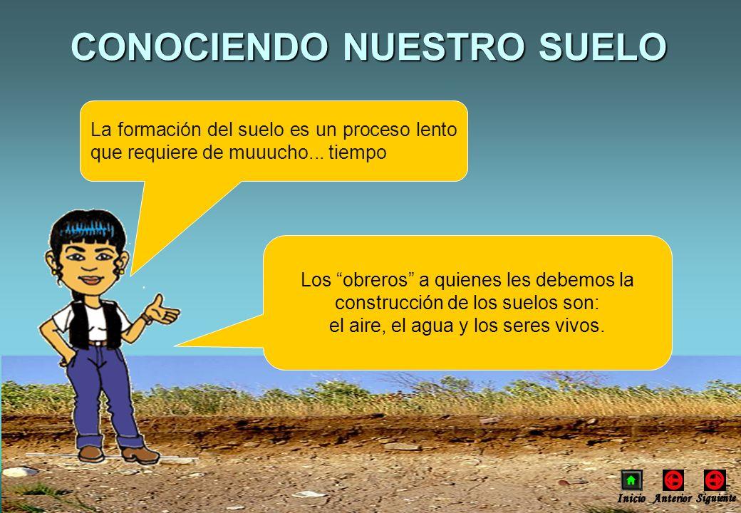 CONOCIENDO NUESTRO SUELO La formación del suelo es un proceso lento que requiere de muuucho... tiempo Los obreros a quienes les debemos la construcció