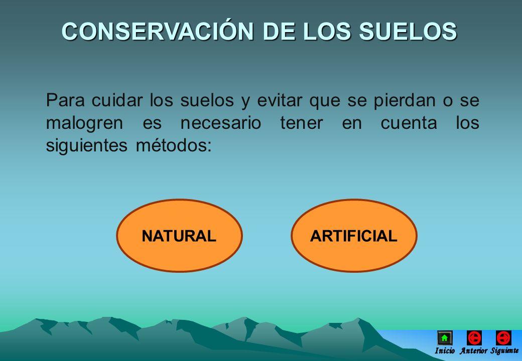 Para cuidar los suelos y evitar que se pierdan o se malogren es necesario tener en cuenta los siguientes métodos: CONSERVACIÓN DE LOS SUELOS NATURALAR