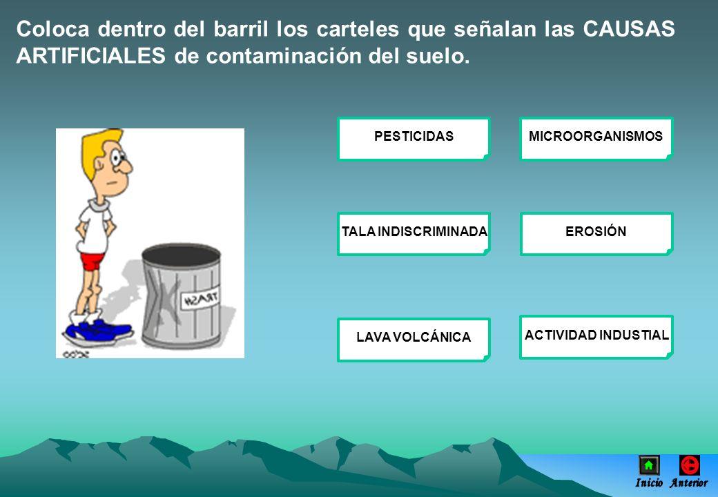 Coloca dentro del barril los carteles que señalan las CAUSAS ARTIFICIALES de contaminación del suelo. PESTICIDASMICROORGANISMOS TALA INDISCRIMINADAERO