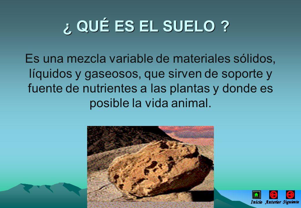 ¿ QUÉ ES EL SUELO ? Es una mezcla variable de materiales sólidos, líquidos y gaseosos, que sirven de soporte y fuente de nutrientes a las plantas y do