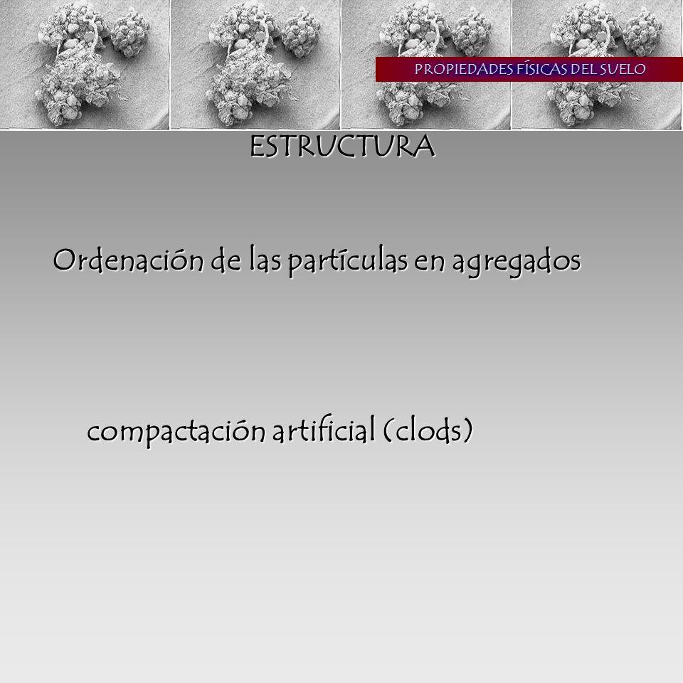 PROPIEDADES FÍSICAS DEL SUELO ESTRUCTURA Ordenación de las partículas en agregados compactación artificial (clods)