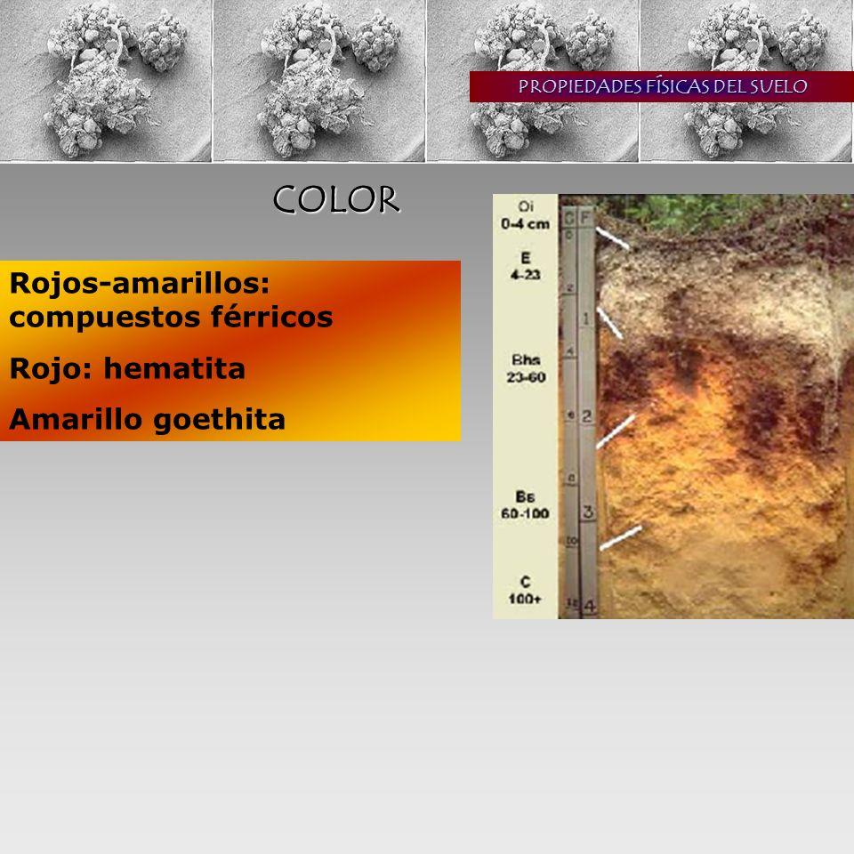 COLOR Rojos-amarillos: compuestos férricos Rojo: hematita Amarillo goethita