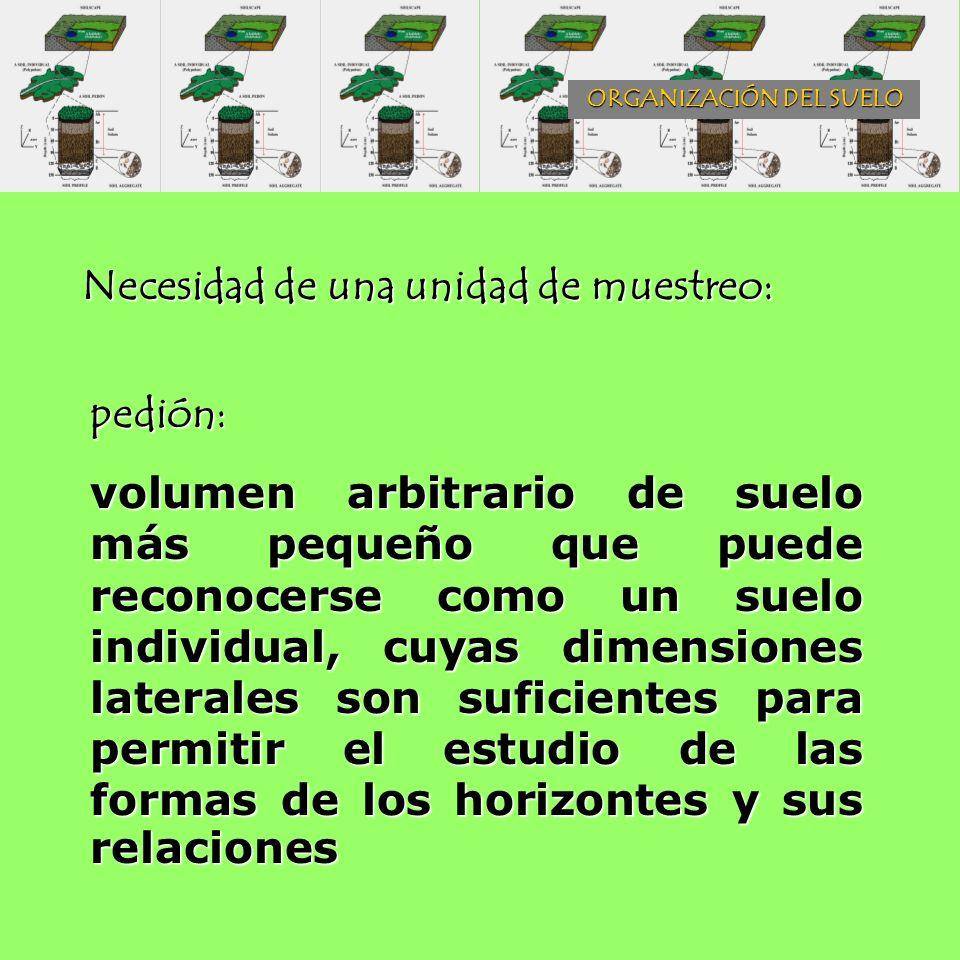 Necesidad de una unidad de muestreo: pedión: volumen arbitrario de suelo más pequeño que puede reconocerse como un suelo individual, cuyas dimensiones