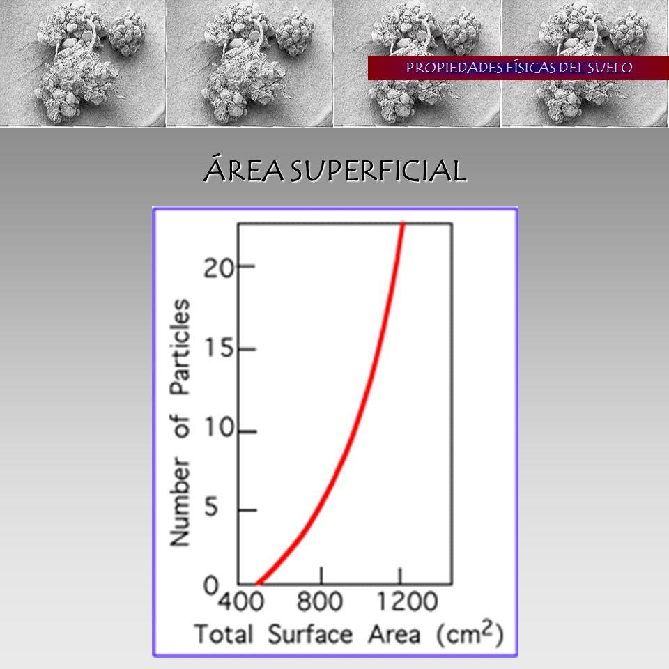 PROPIEDADES FÍSICAS DEL SUELO ÁREA SUPERFICIAL partículas pequeñas mayor área menor tamaño de poro mayor retención de agua suelos pesados