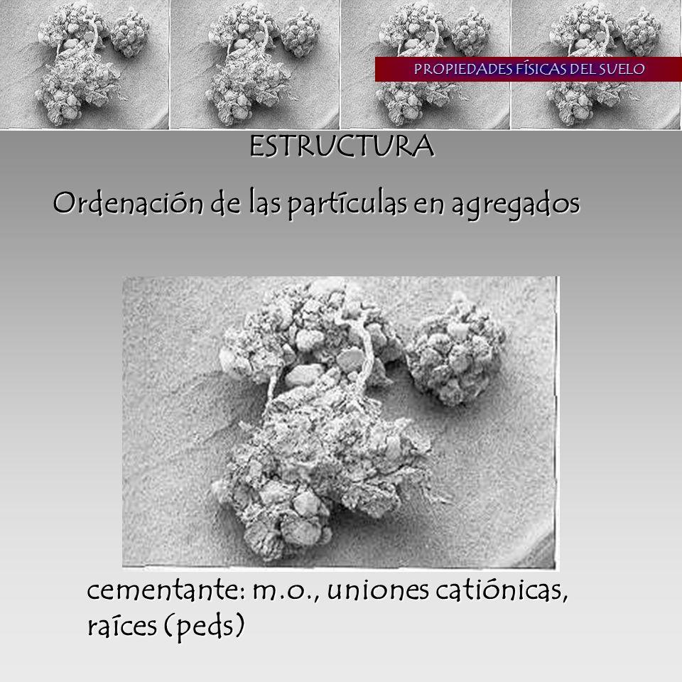 ORGANIZACIÓN DEL SUELO paisaje: