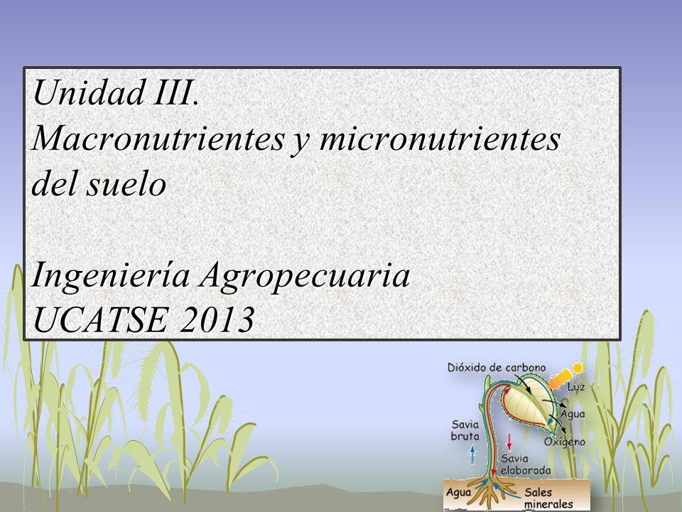 Unidad III. Macronutrientes y micronutrientes del suelo Ingeniería Agropecuaria UCATSE 2013