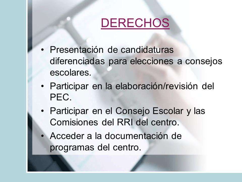 DERECHOS Presentación de candidaturas diferenciadas para elecciones a consejos escolares.