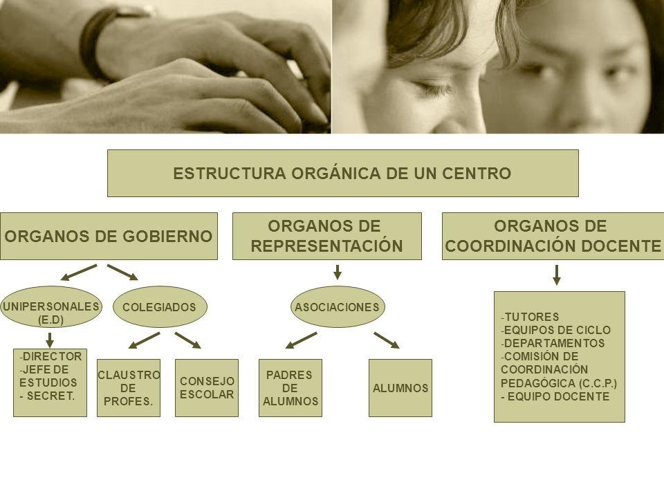 ORGANOS UNIPERSONALES EL EQUIPO DIRECTIVO El J.E.
