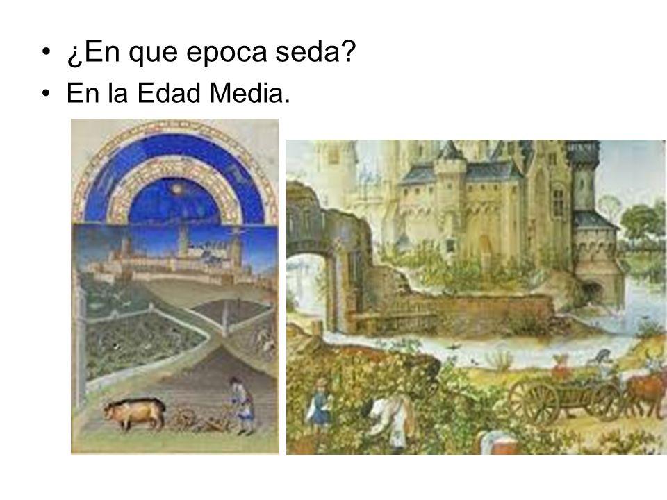 ¿En que epoca seda? En la Edad Media.