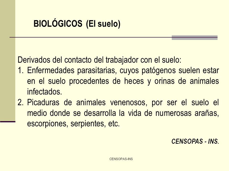 CENSOPAS-INS BIOLÓGICOS (El suelo) Derivados del contacto del trabajador con el suelo: 1.Enfermedades parasitarias, cuyos patógenos suelen estar en el