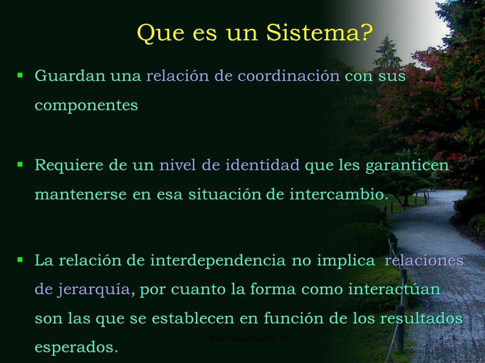 3meorjuelar@unal.edu.co3 Que es un Sistema? Conjunto de partes en relación constante, que implica normas y organización Conjunto de elementos o indivi