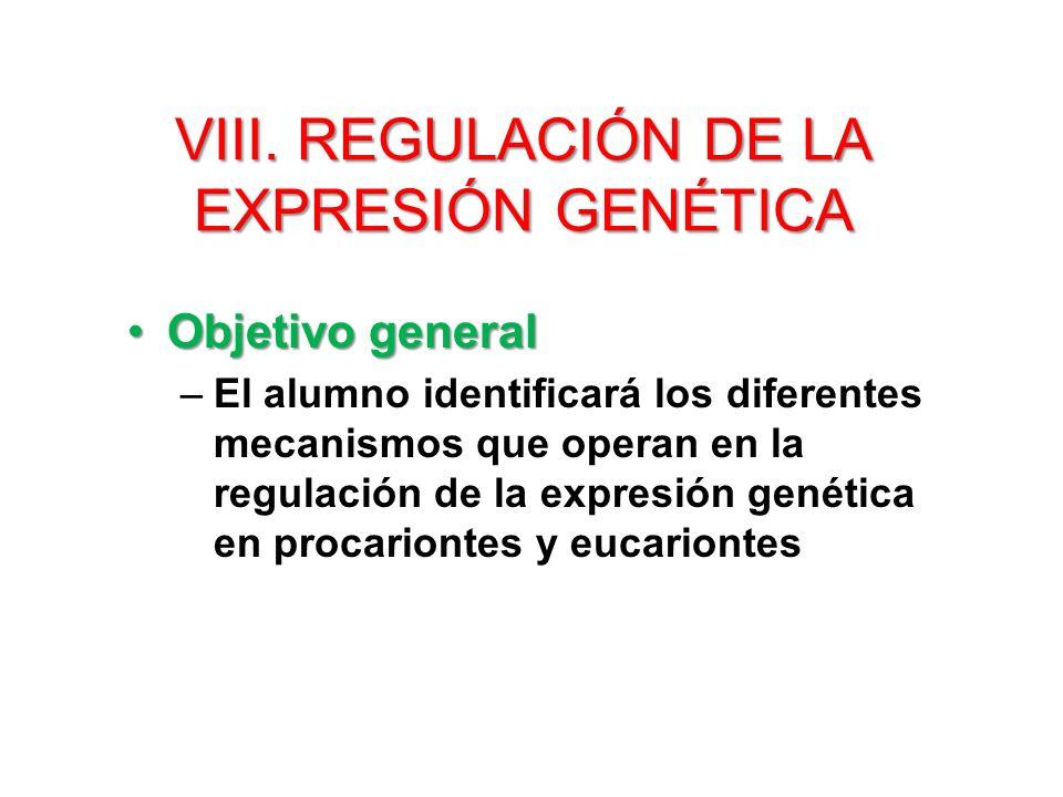 Objetivos del tema VIII.REGULACIÓN DE LA EXPRESIÓN GENÉTICA El alumno...