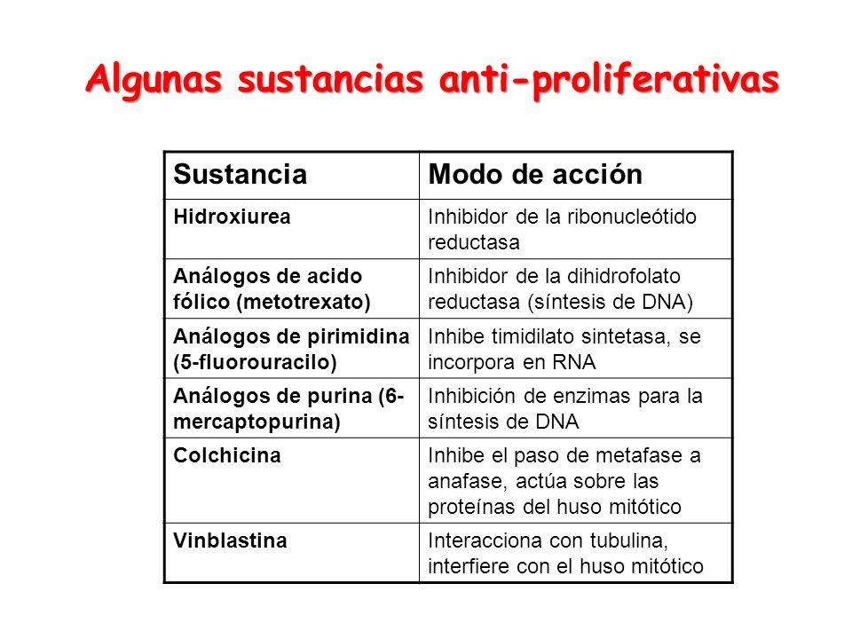 Algunas sustancias anti-proliferativas SustanciaModo de acción HidroxiureaInhibidor de la ribonucleótido reductasa Análogos de acido fólico (metotrexa