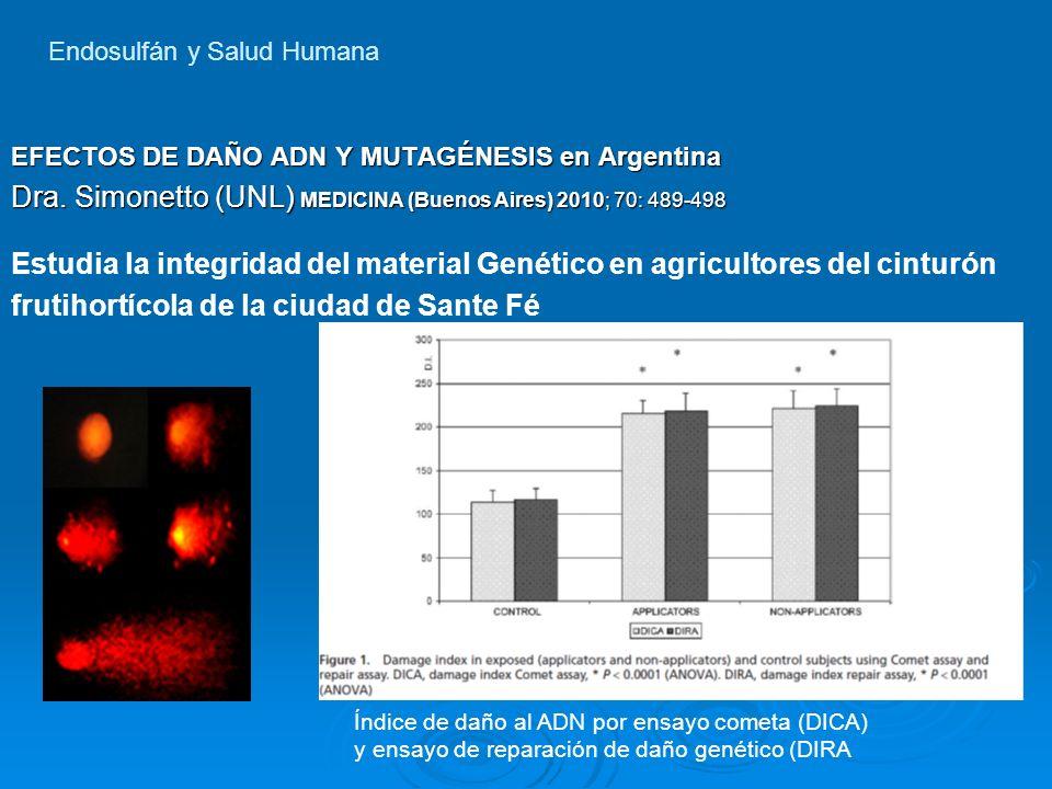 EFECTOS DE DAÑO ADN Y MUTAGÉNESIS en Argentina Dra. Simonetto (UNL) MEDICINA (Buenos Aires) 2010; 70: 489-498 Estudia la integridad del material Genét