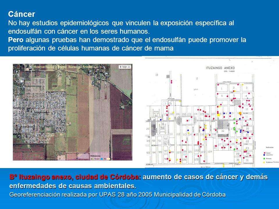 Distribución espacial de enfermos Bº Ituzaingo Anexo, Córdoba Georeferenciación: UPAS 28, 2005 2008 la justicia procesa por envenenamiento a los aplicadores y productores, después de encontrar glifo- sato y endosulfán en los patios de las casas.