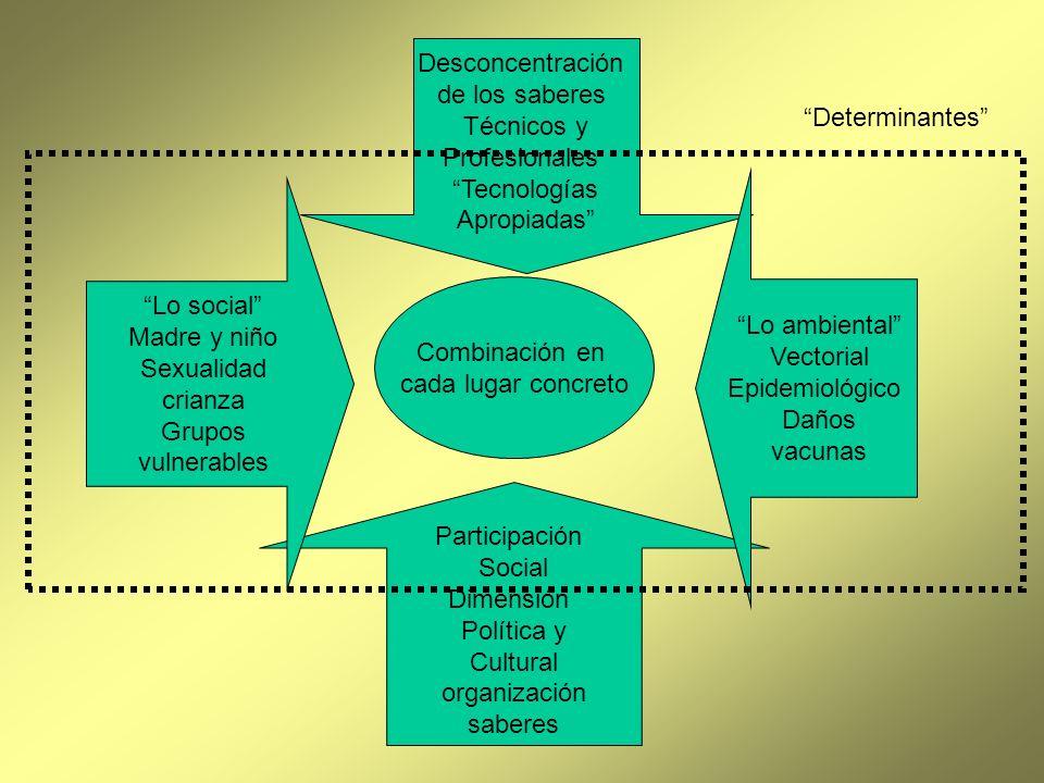 Participación Social Dimensión Política y Cultural organización saberes Desconcentración de los saberes Técnicos y Profesionales Tecnologías Apropiada
