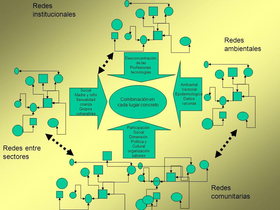 Participación Social Dimensión Política y Cultural organización saberes Desconcentración de las Profesiones tecnologías Ambiental Vectorial Epidemioló