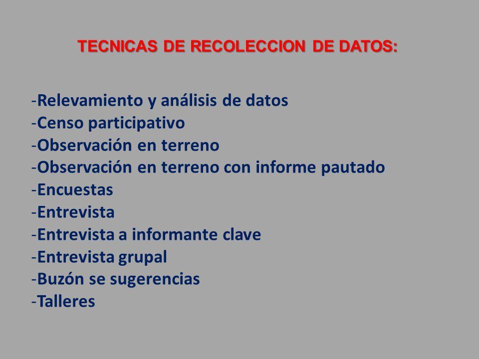 TECNICAS DE RECOLECCION DE DATOS: -Relevamiento y análisis de datos -Censo participativo -Observación en terreno -Observación en terreno con informe p