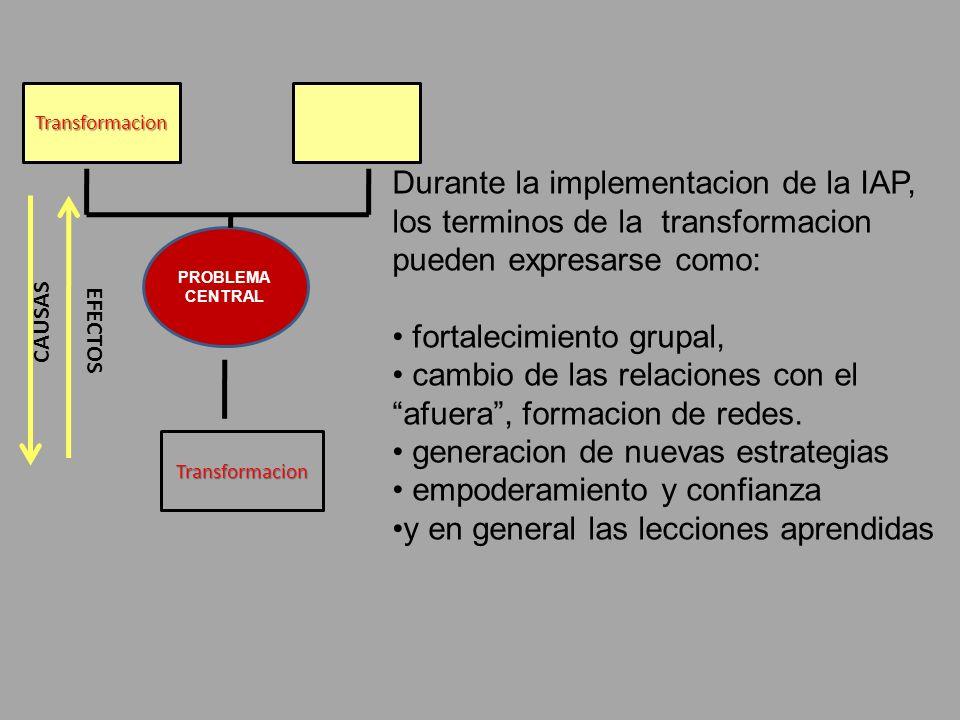 Transformacion Transformacion PROBLEMA CENTRAL CAUSAS EFECTOS Durante la implementacion de la IAP, los terminos de la transformacion pueden expresarse