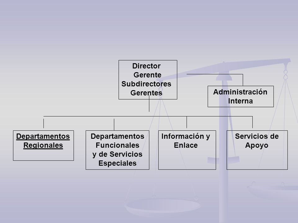 Departamentos Funcionales y de Servicios Especiales Servicios de Apoyo Administración Interna Departamentos Regionales Información y Enlace Director G