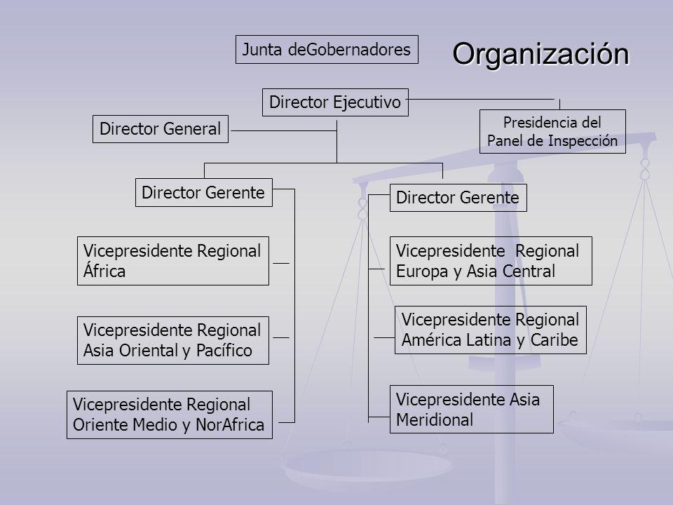 Organización Junta deGobernadores Director Ejecutivo Presidencia del Panel de Inspección Director General Director Gerente Vicepresidente Regional Áfr