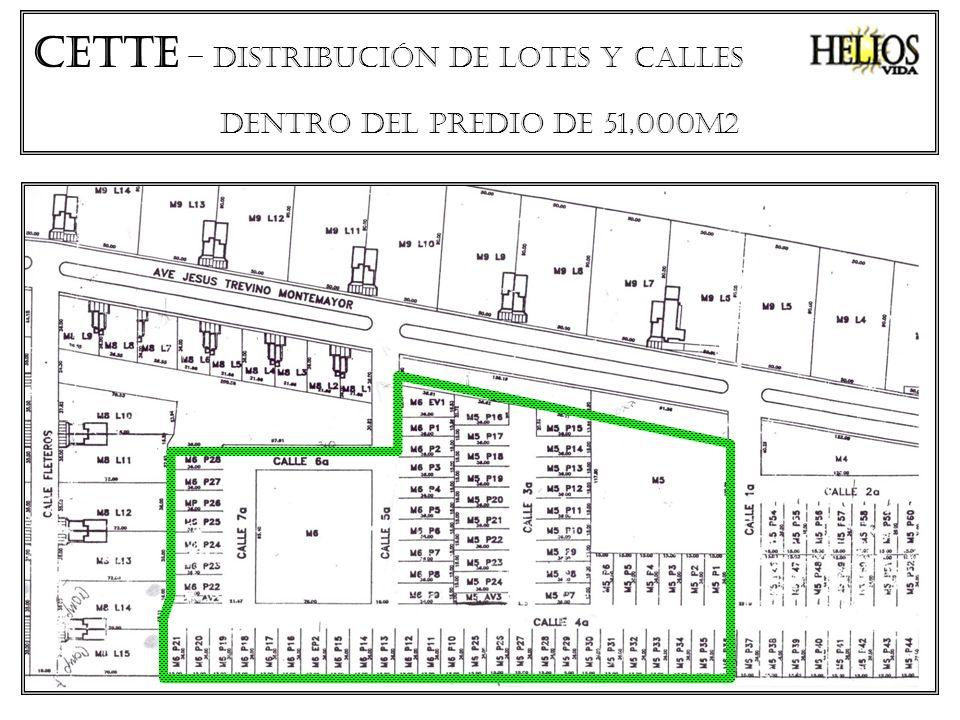 CETTe – distribución de lotes Y CALLES DENTRO DEL PREDIO DE 51,000M2
