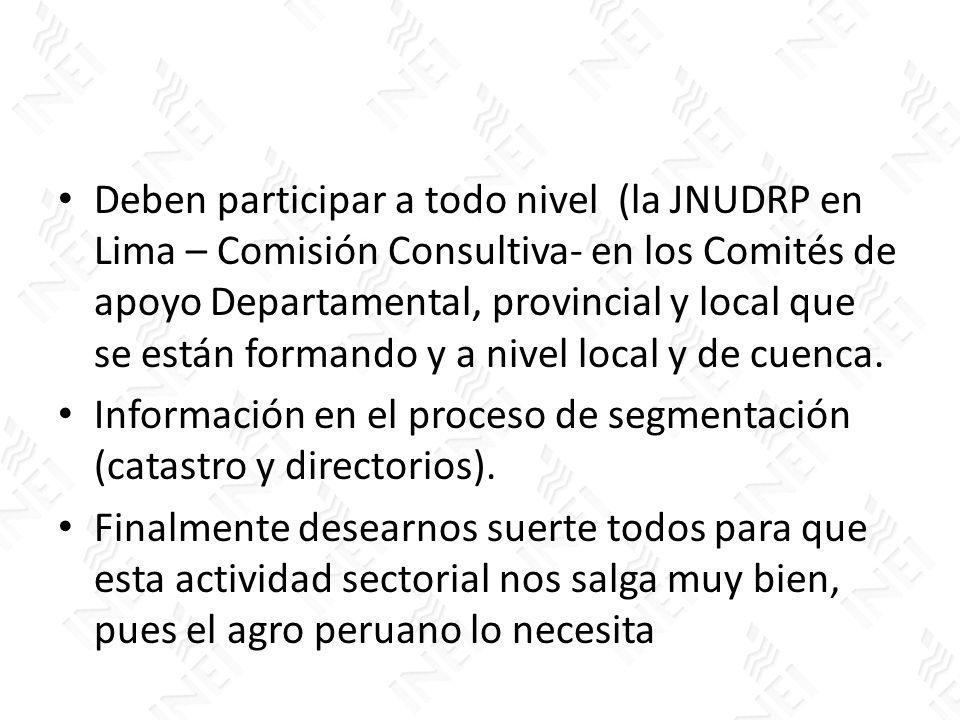 Deben participar a todo nivel (la JNUDRP en Lima – Comisión Consultiva- en los Comités de apoyo Departamental, provincial y local que se están formand