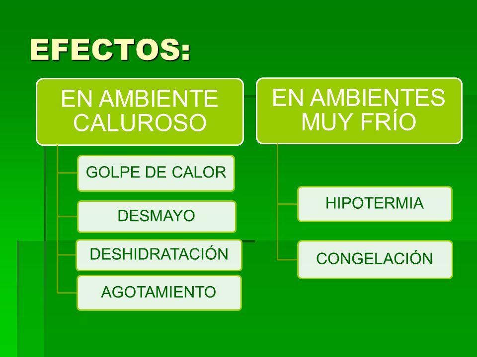 EFECTOS: EN AMBIENTE CALUROSO GOLPE DE CALOR DESMAYO DESHIDRATACIÓN AGOTAMIENTO EN AMBIENTES MUY FRÍO HIPOTERMIA CONGELACIÓN