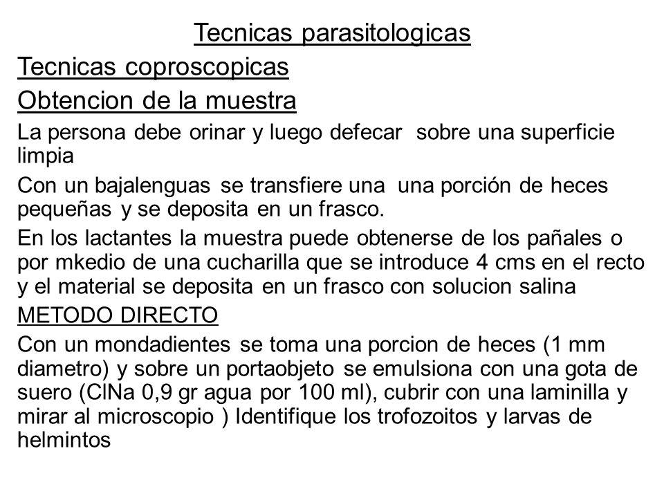 Tecnicas parasitologicas Tecnicas coproscopicas Obtencion de la muestra La persona debe orinar y luego defecar sobre una superficie limpia Con un baja