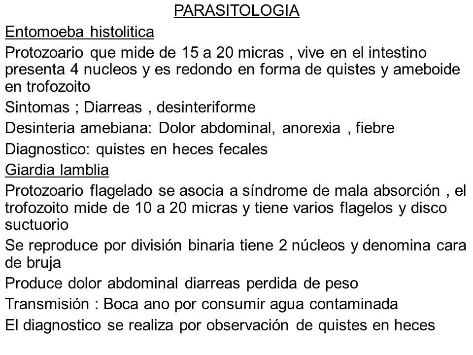 Tricomoniasis El triconoma vaginalis es flagelado y agente etiologico, puede hallarse en uretra y prostata sin causar sintomas, se transmite por relaciones sexuales Da flujo abundante color lechoso, mal olor genital, dolor en relaciones sexuales Diagnostico Se toma una muestra del flujo sospechoso se coloca en una gota de suero y se ve al microscopio tratamiento:Metronidazol, tambien se puede usar tinidazol Balantidiasis Causa el ballantidium coli protozoo de mayor tamaño que afect al hombre, en trofozoito es la fase inmadura.