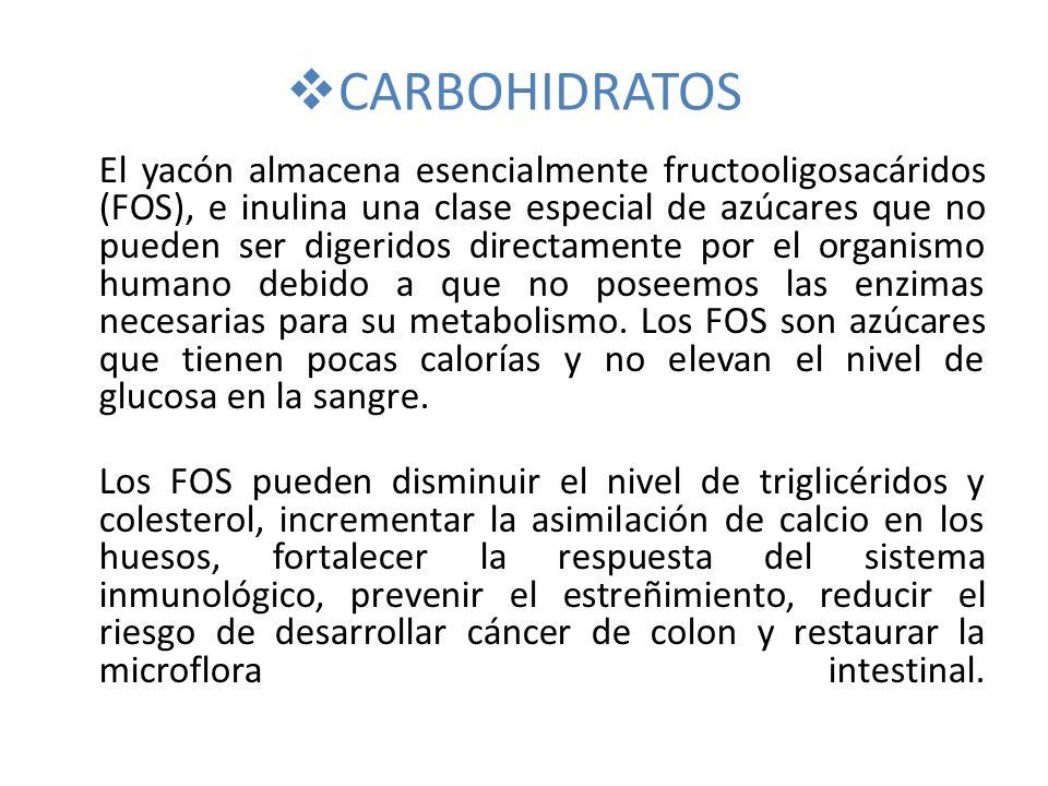 CARBOHIDRATOS El yacón almacena esencialmente fructooligosacáridos (FOS), e inulina una clase especial de azúcares que no pueden ser digeridos directamente por el organismo humano debido a que no poseemos las enzimas necesarias para su metabolismo.