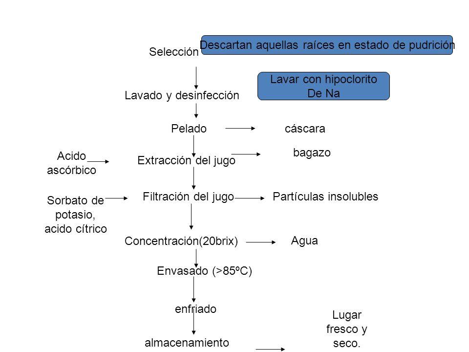 Concentración(20brix) Filtración del jugo Extracción del jugo Selección Pelado Lavado y desinfección Envasado (>85ºC) enfriado almacenamiento Sorbato