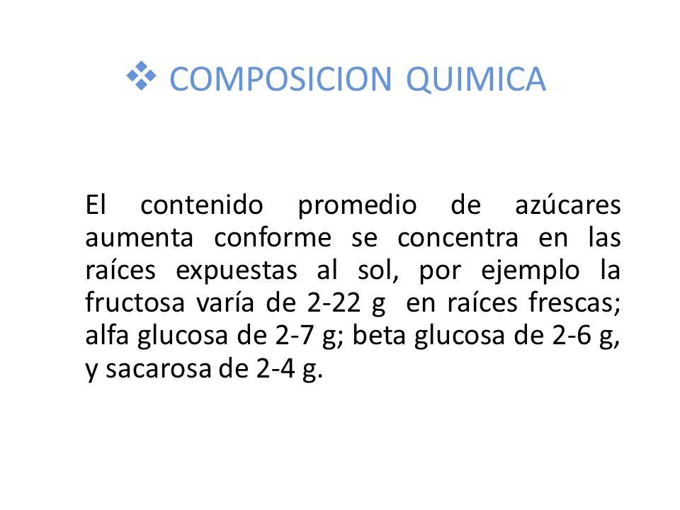COMPOSICION QUIMICA El contenido promedio de azúcares aumenta conforme se concentra en las raíces expuestas al sol, por ejemplo la fructosa varía de 2-22 g en raíces frescas; alfa glucosa de 2-7 g; beta glucosa de 2-6 g, y sacarosa de 2-4 g.