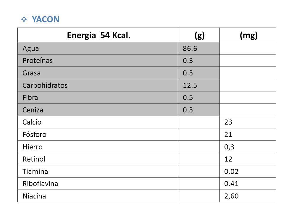 Energía 54 Kcal.(g)(mg) Agua86.6 Proteínas0.3 Grasa0.3 Carbohidratos12.5 Fibra0.5 Ceniza0.3 Calcio23 Fósforo21 Hierro0,3 Retinol12 Tiamina0.02 Riboflavina0.41 Niacina2,60 YACON