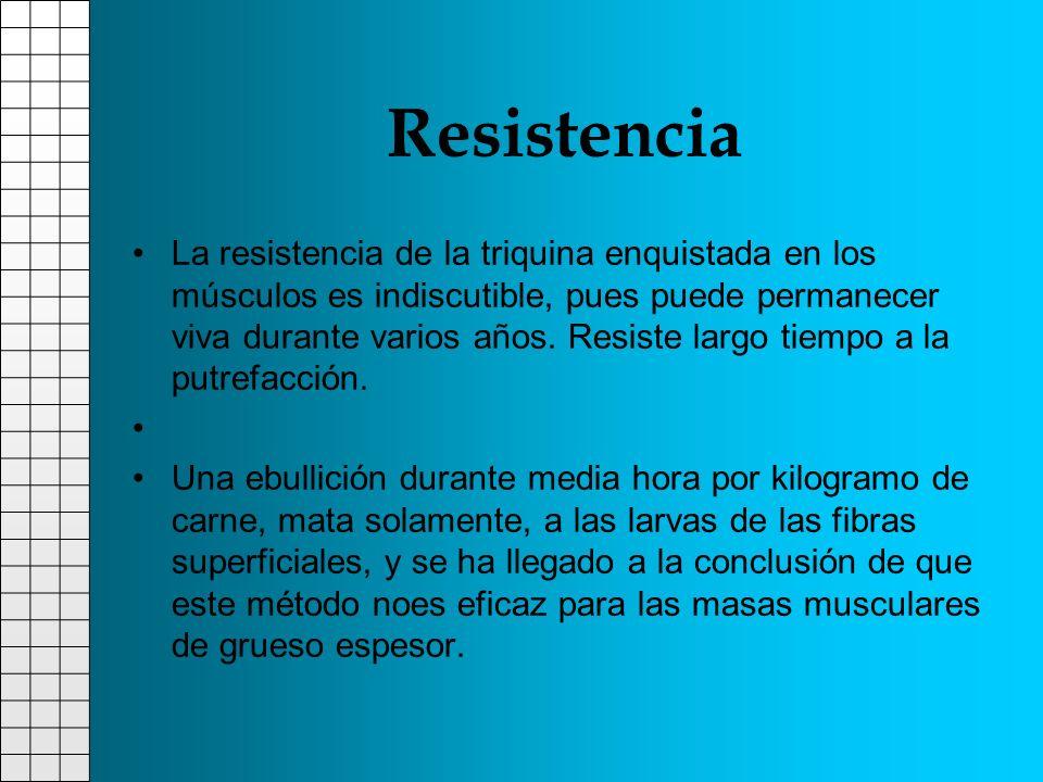 Resistencia La resistencia de la triquina enquistada en los músculos es indiscutible, pues puede permanecer viva durante varios años. Resiste largo ti