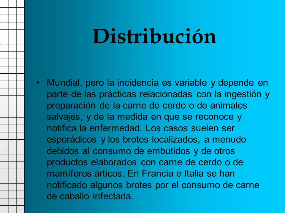 Distribución Mundial, pero la incidencia es variable y depende en parte de las prácticas relacionadas con la ingestión y preparación de la carne de ce