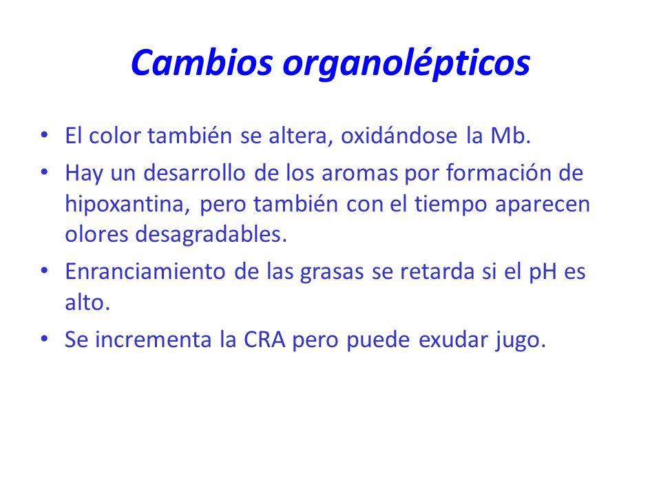 Cambios organolépticos El color también se altera, oxidándose la Mb. Hay un desarrollo de los aromas por formación de hipoxantina, pero también con el