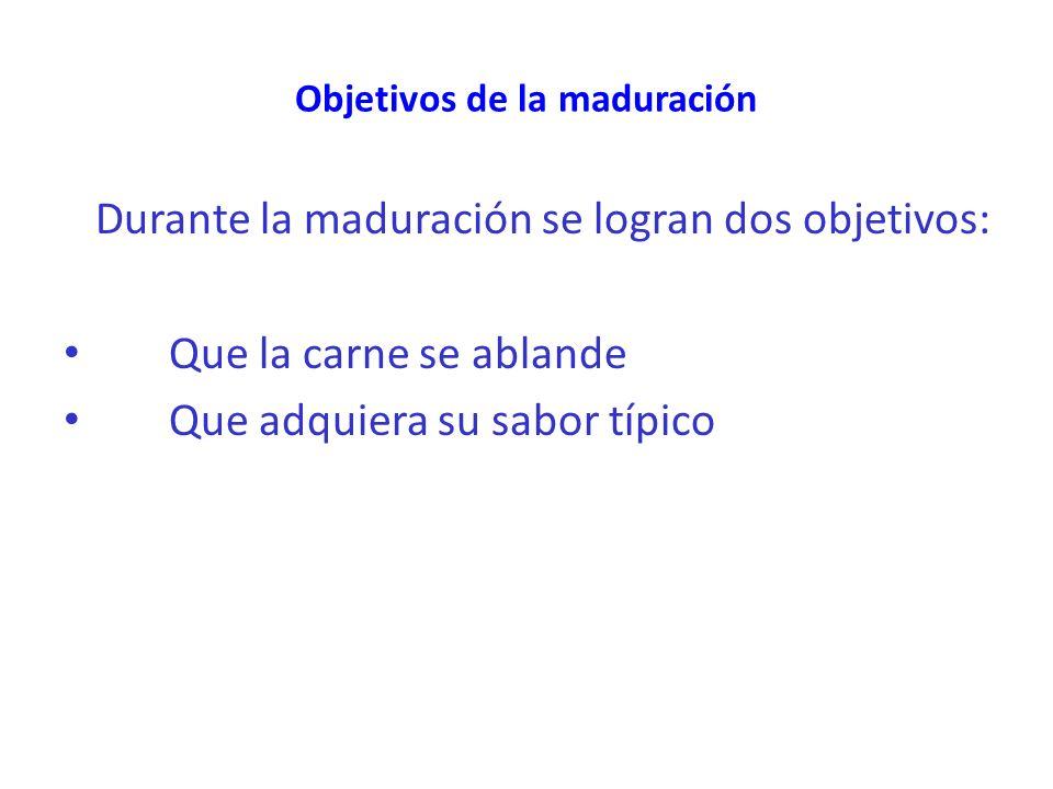 Objetivos de la maduración Durante la maduración se logran dos objetivos: Que la carne se ablande Que adquiera su sabor típico