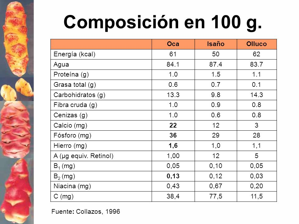 Composición en 100 g. OcaIsañoOlluco Energía (kcal)615062 Agua84.187.483.7 Proteína (g)1.01.51.1 Grasa total (g)0.60.70.1 Carbohidratos (g)13.39.814.3